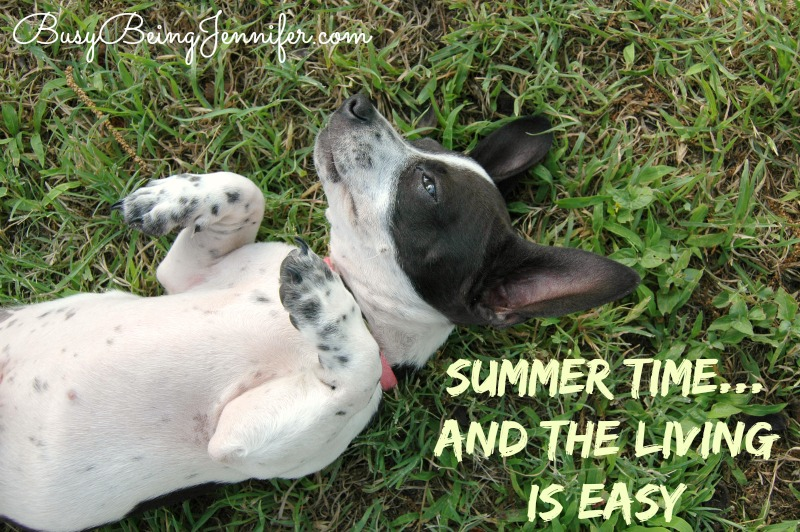 Summer Time and the Living is Easy - BusyBeingJennifer.com