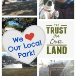 We heart our local park! - busybeingjennifer.com