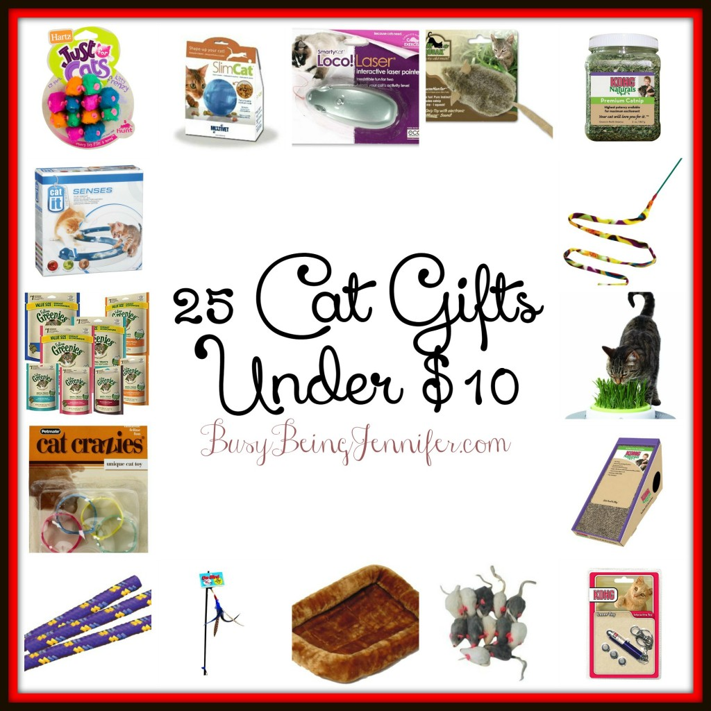 25 Gifts for your Cats! - BusyBeingJennifer.com