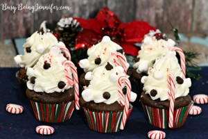Perfect for holiday parties or just because, you can't go wrong with these Peppermint Cocoa Cupcakes!