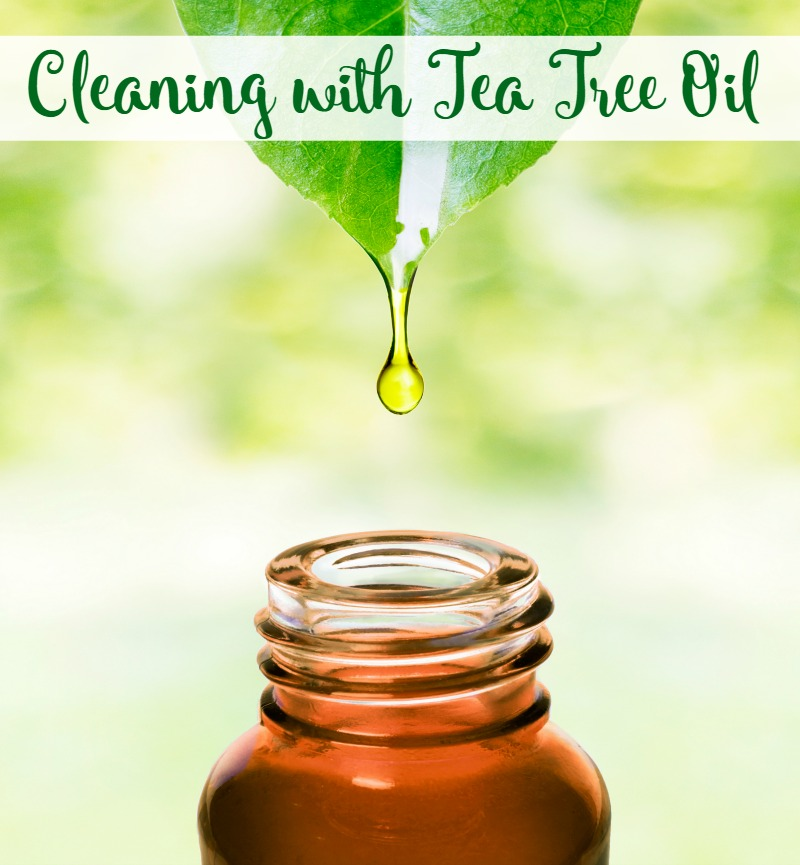Cleaning with Tea Tree Oil