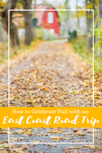 The cool crisp air, with the smell of the ocean and the hillsides covered in autumn leaves, describes perfectly, an East Coast road trip that will arouse the senses.